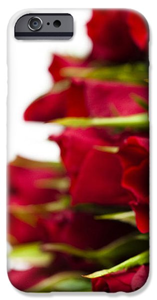 Red Roses iPhone Case by Anne Gilbert