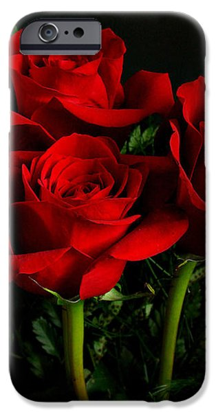 Red Roses iPhone Case by Sandy Keeton