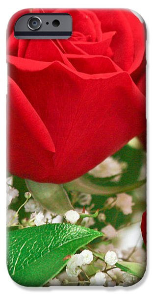 Red Roses with Baby's Breath iPhone Case by Ann  Murphy