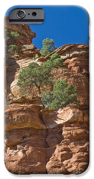 Sedona iPhone Cases - Red Sandstone Cliffs & Trees At Palatki iPhone Case by Ellen Thane