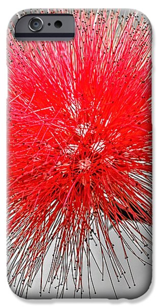 Red Spikes iPhone Case by Dawn Currie