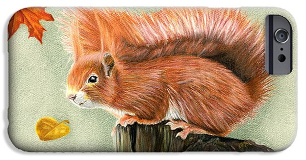 Autumn Drawings iPhone Cases - Red Squirrel In Autumn iPhone Case by Sarah Batalka