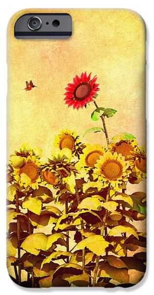 Transcendental iPhone Cases - Red Sunflower iPhone Case by Bob Orsillo