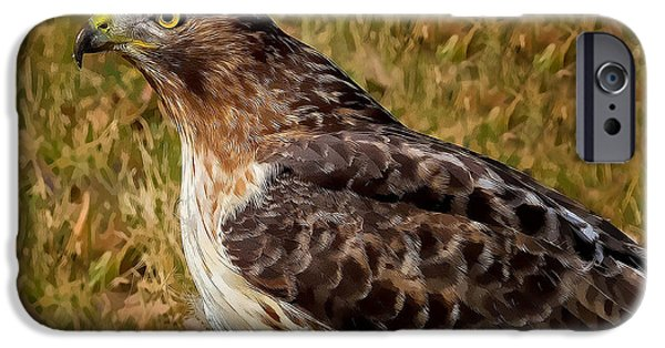 Red Tail Hawk Digital Art iPhone Cases - Red Tailed Hawk Close Up iPhone Case by John Absher