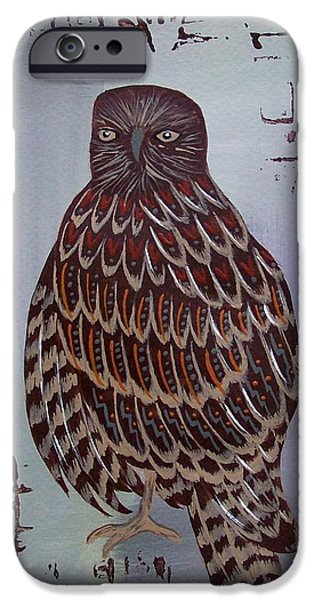 Hawk Art Print iPhone Cases - Red Tailed Hawk iPhone Case by Jean Fry