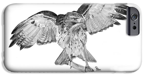 Spirit Hawk iPhone Cases - Red Tailed Hawk iPhone Case by Roy  Ramakers