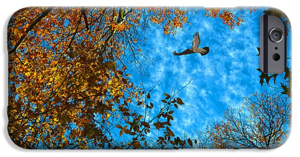 Red Tail Hawk Digital Art iPhone Cases - Red-tailed Hawk iPhone Case by Sandi OReilly