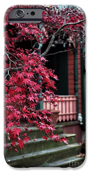 Red School House iPhone Cases - Red Tree iPhone Case by John Rizzuto