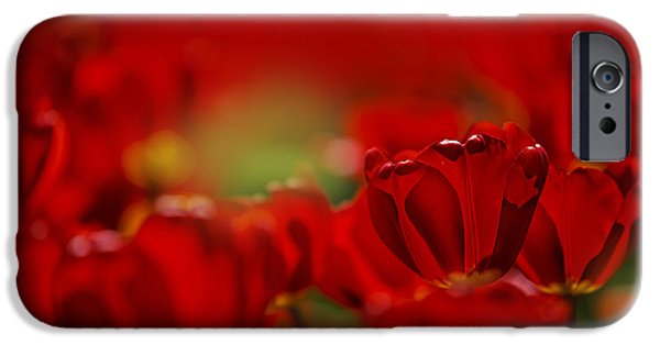 Tulips Photographs iPhone Cases - Red Tulips iPhone Case by Nailia Schwarz