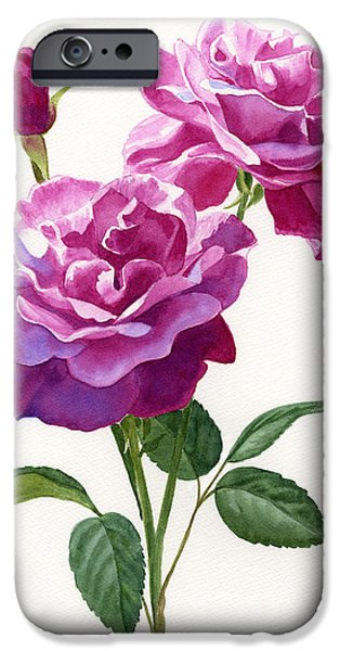 Red Violet Roses with Bud on White iPhone Case by Sharon Freeman