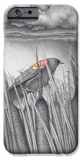 Pen And Ink iPhone Cases - Red-winged Blackbird iPhone Case by Wayne Hardee