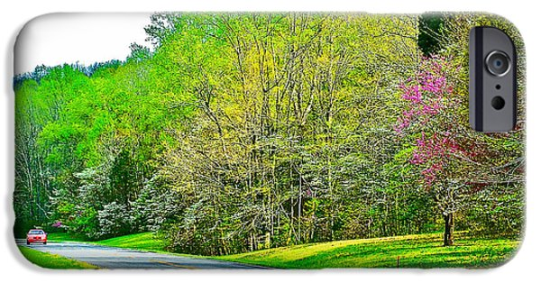 Natchez Trace Parkway iPhone Cases - Redbud and Dogwood in Spring at Mile 363 of Natchez Trace Parkway-Tennessee iPhone Case by Ruth Hager