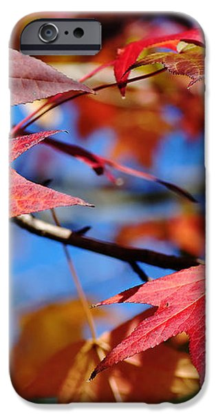 Reds of Autumn iPhone Case by Kaye Menner