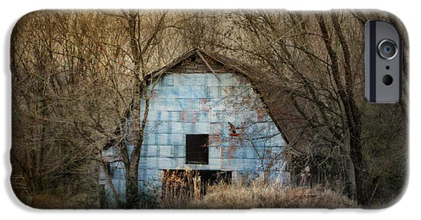Tennessee Barn iPhone Cases - Redtail At The Blue Barn iPhone Case by Jai Johnson
