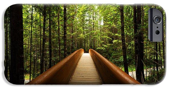Rainforest iPhone Cases - Redwood Bridge iPhone Case by Chad Dutson