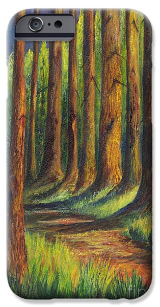 Pathway Drawings iPhone Cases -  Jedediah Smith Redwoods State Park iPhone Case by Carol Wisniewski