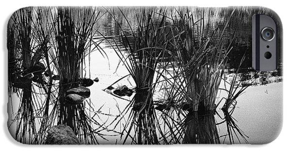Prescott Photographs iPhone Cases - Reeds iPhone Case by Arne Hansen