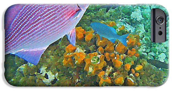 Fish On A Reef iPhone Cases - Reef Life iPhone Case by John Malone