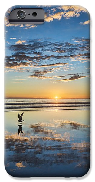 Recently Sold -  - Sea Birds iPhone Cases - Reflected Flight iPhone Case by Dan McGeorge