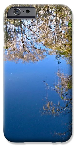 Reflection iPhone Case by Denise Mazzocco