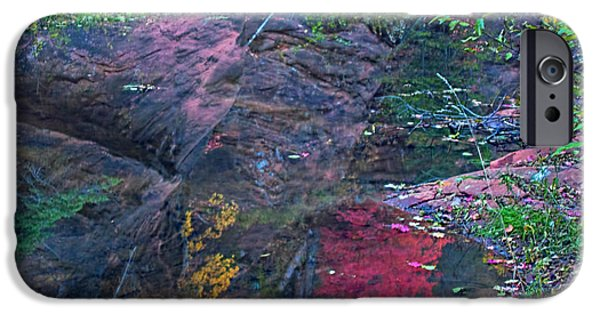 West Fork iPhone Cases - Reflection in the Creek iPhone Case by Brian Lambert