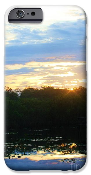 Mangrove Forest iPhone Cases - Reflection Of A Sunrise iPhone Case by Chuck  Hicks