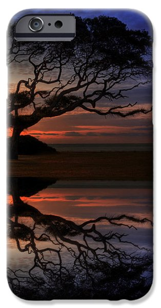 Reflection Of Trees iPhone Cases - Reflection of Troubled Times iPhone Case by Greg and Chrystal Mimbs