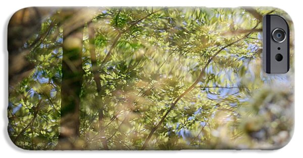 Forest iPhone Cases - Reflection 6 iPhone Case by Kaitlin Gruss