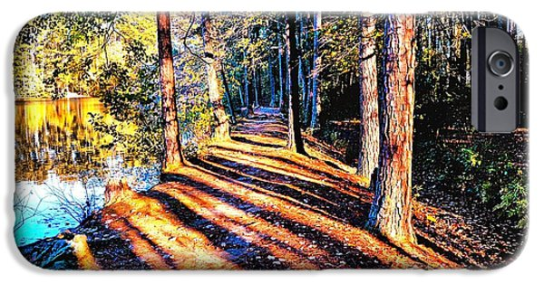 Pines iPhone Cases - Reflections and Shadows of Fall iPhone Case by James Potts