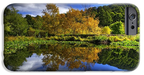 Lilly Pads iPhone Cases - Reflections iPhone Case by Damian Morphou