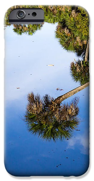 Reflections iPhone Case by Lee Stewart