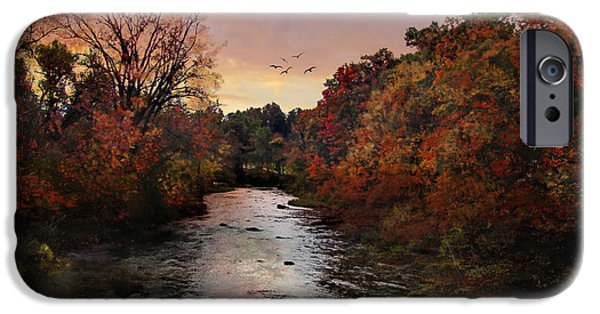 Tree Art Print iPhone Cases - Reflections of an Autumn Day iPhone Case by Lianne Schneider