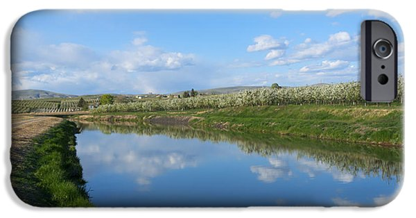 Yakima Valley iPhone Cases - Reflections of Spring iPhone Case by Mike  Dawson