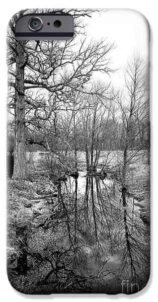 Reflections Of Nature iPhone Cases - Reflections of the Past iPhone Case by John Rizzuto