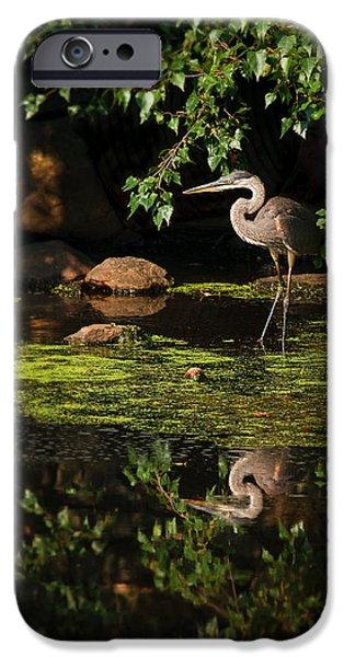 reflective heron iPhone Case by Sylvia J Zarco