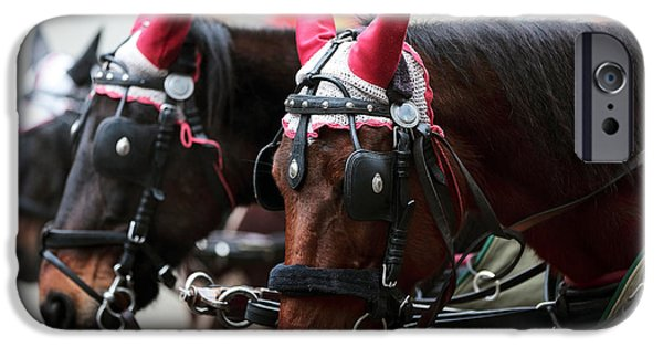 Horse And Buggy iPhone Cases - Reindeer Horses iPhone Case by John Rizzuto