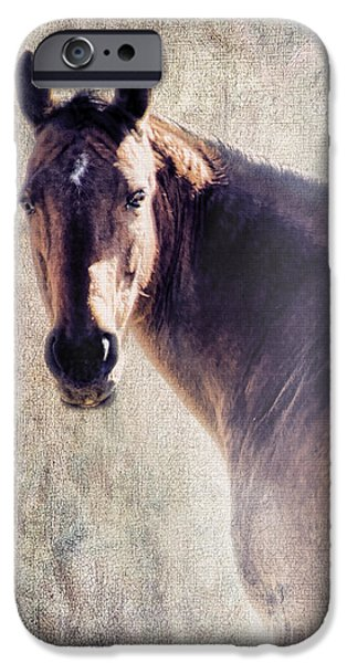 Reliability iPhone Case by Betty LaRue