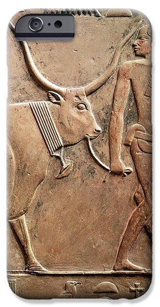 Hieroglyph iPhone Cases - Relief Depicting A Peasant Leading A Cow To Sacrifice, From The Mastab Of Ptah-hotep iPhone Case by Egyptian 5th Dynasty