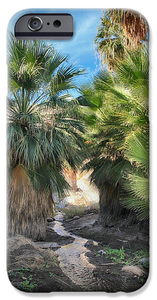 Laurie Search Photographs iPhone Cases - Relief iPhone Case by Laurie Search