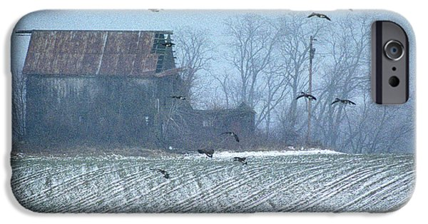 Photos Of Birds iPhone Cases - Remembering The Farm iPhone Case by Skip Willits