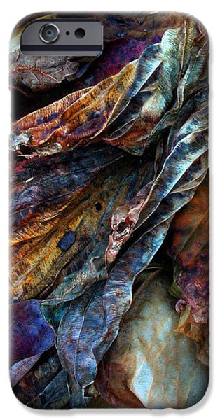 Decay iPhone Cases - Remnants iPhone Case by Jessica Jenney