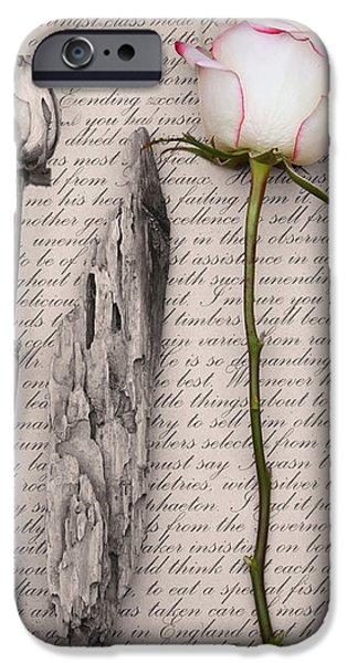 Renaissance iPhone Case by Sue Heaton