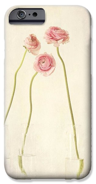 Flower Still Life iPhone Cases - Renoncules iPhone Case by Priska Wettstein