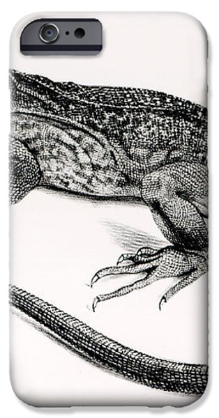 Reptile iPhone Case by English School
