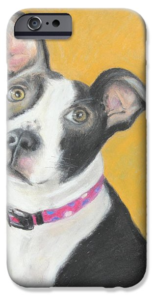 Bulls Pastels iPhone Cases - Rescued Pit Bull iPhone Case by Jeanne Fischer