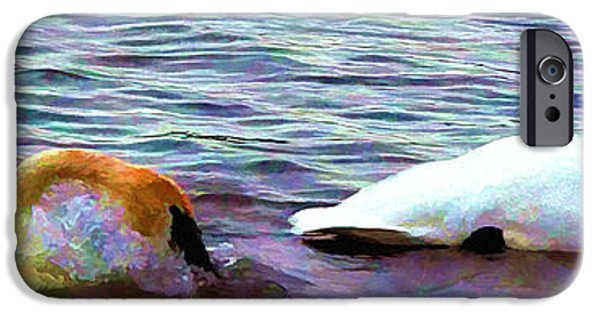 Swans... iPhone Cases - Rest Now iPhone Case by Kathy Bassett