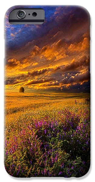 Winter Storm iPhone Cases - Resting In Your Smile iPhone Case by Phil Koch