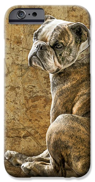 Judy Wood Digital Art iPhone Cases - Resting Place iPhone Case by Judy Wood
