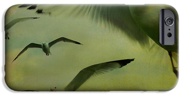 Flying Seagull iPhone Cases - Retro Seagulls iPhone Case by Gothicolors Donna Snyder