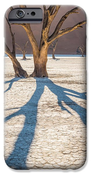 Shadow iPhone Cases - Return of the Shadow of the Camel Thorn iPhone Case by Duane Miller